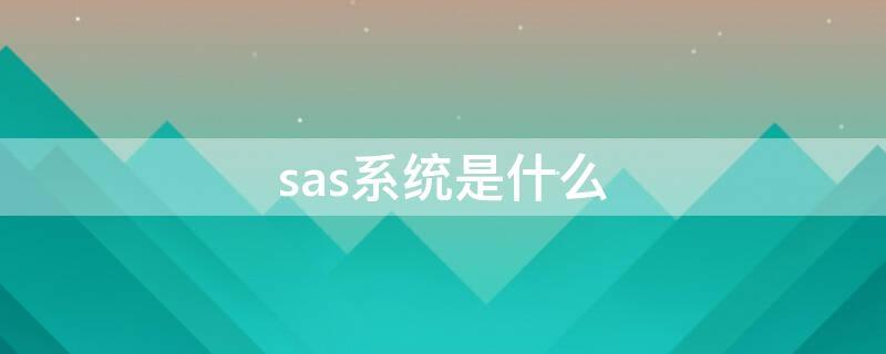 sas系统是什么